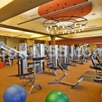 Fitness Center - strength training equipment
