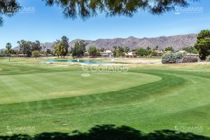 Ahwatukee Golf Course